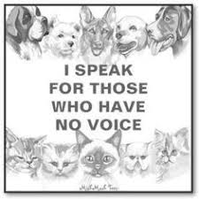 Sayings Quotes About Animal Neglect. QuotesGram