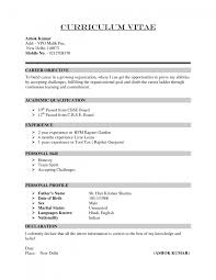 curriculum vitae samples pdf format cipanewsletter cover letter resume pdf template job resume template pdf pdf