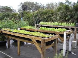 Small Picture raised bed vegetable gardening for beginners bylinky Pinterest