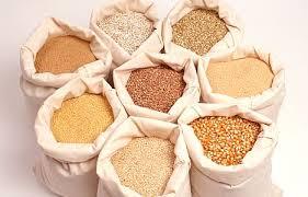 Картинки по запросу украинские зерно