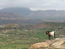 Hochland von Abessinien
