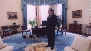 george w bush oval office. bush takes a last look around the oval office with his dog ranger before photos 41 president george w s
