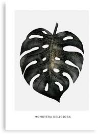 """Monstera leaf - black & <b>gold</b>"" <b>Canvas</b> Print by nth4ka | Redbubble"