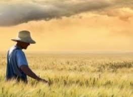 Come creare un'economia agricola sostenibile