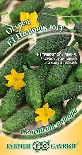 <b>Семена Огурец Подарок</b> югу <b>F1</b>, 10шт, Гавриш, Семена от автора