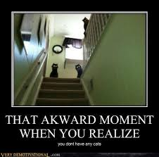 That Awkward Moment When You Realize There's A Meme Animal Site ... via Relatably.com