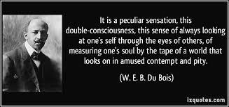 Web dubois essay Dr  Dick Barnett