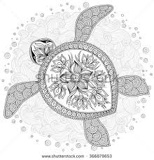 Small Picture Turtle Stock Photos Images Pictures Shutterstock crafts