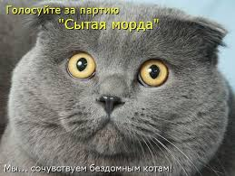 Комитет Рады блокирует пенсионную реформу из-за нежелания отменять спецпенсии, - Розенко - Цензор.НЕТ 3527