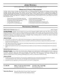 resume example marketing manager format cokid org sample online marketing manager resume