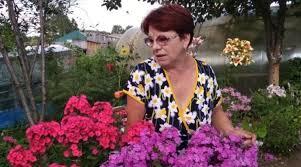 Жительница Бийского района разводит на своем участке ...