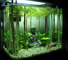 <b>Декорации для аквариума</b>, <b>примеры</b> | история | Домашний ...