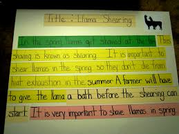 this paragraph goes along the traffic light how to write a using bulletin board and sentence strips to help topic sentences details conclusion