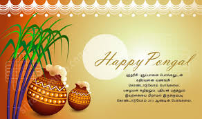 happy sankranthi kanuma messages greetings in telugu tamil happy pongal wishes 2015