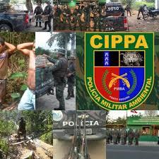 Resultado de imagem para CIPPA ILHÉUS
