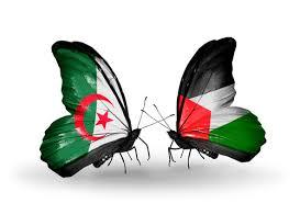 % فلسطين الأولى عالميًّا... حنان الحروب تفوز بلقب أفضل معلمة %