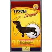 <b>Трусы</b> для собак на время течки | Купить в зоомагазине с доставкой