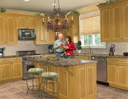 Kitchen Design Freeware Punch Home Design Software Free Download Home And Landscaping Design