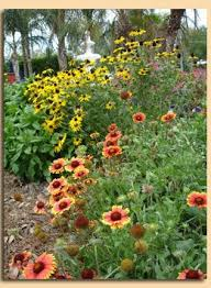 Small Picture 146 best Country Gardening ideas images on Pinterest Florida