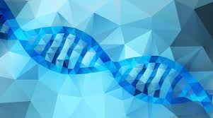 What is <b>DNA</b>? | Facts | yourgenome.org