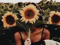 summer ideas: лучшие изображения (17) | Летние фотографии ...