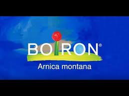 Arnica montana | BOIRON USA