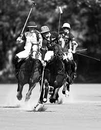 <b>UNITED STATES POLO</b> ASSOCIATION
