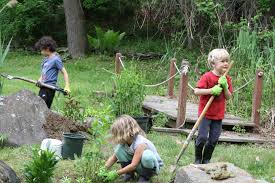 Image result for image environmental education