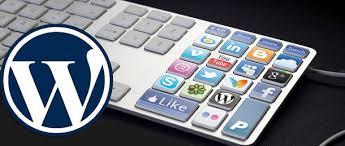 20+ Best Social Media Plugins For WordPress - WPExplorer