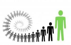 Risultati immagini per individuazione docenti per competenze