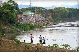 Resultado de imagen para jarillon del rio cauca