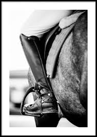<b>Horse Riding Poster</b> | Postery.com | Posters Online