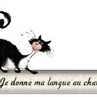 """Résultat de recherche d'images pour """"gif je donne ma langue au chat"""""""