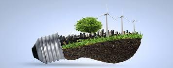 Resultado de imagem para gestor ambiental