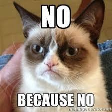 No Because NO - Grumpy Cat | Meme Generator via Relatably.com