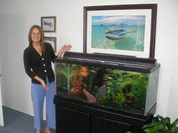 innerscapes has been servicing our office aquarium for over 17 years clearly we are happy with our service arrangement and our patients have always loved aquarium office