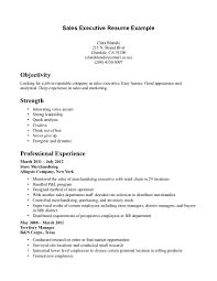 resume  executive resume  seangarrette cosales executive resume exles sample resume sales executive resume exles   resume  executive