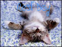Image result for rest day