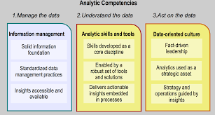 business analytics  analyticscompetencies