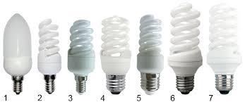 <b>Ecola</b>-<b>Light</b>