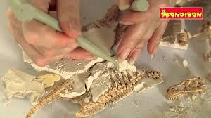 """<b>Bondibon</b> - """"<b>Французские опыты: Науки</b> от Буки"""" - Динозавры ..."""