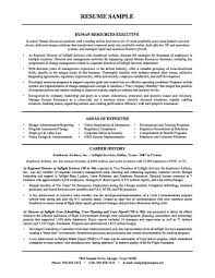 sample resume objective for medical billing position resume sample resume objective for medical billing position medical billing manager resume sample human resources resume objective