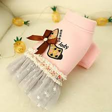 ZoePets <b>High</b> Heel Pet Princess Dress <b>Autumn Winter</b> Pet Clothing ...