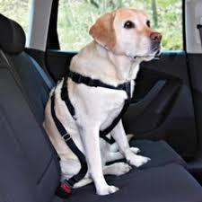 Отзывы о <b>Автомобильный ремень</b>-поводок для собак <b>Trixie</b>