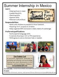 internship opportunity the fatted calf internship opportunity