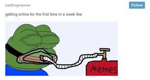 The Strangest Pepe the Frog Memes | SMOSH via Relatably.com