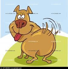 Bildresultat för glad hund tecknad