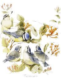 """Résultat de recherche d'images pour """"gifs fraises & oiseaux"""""""