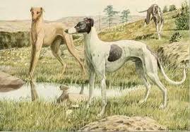 Οι σκύλοι της Περσεφόνης...