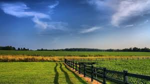 Image result for organic farming free images